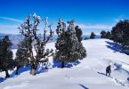 Nag Tibba Trek - The Mysterious Place In India